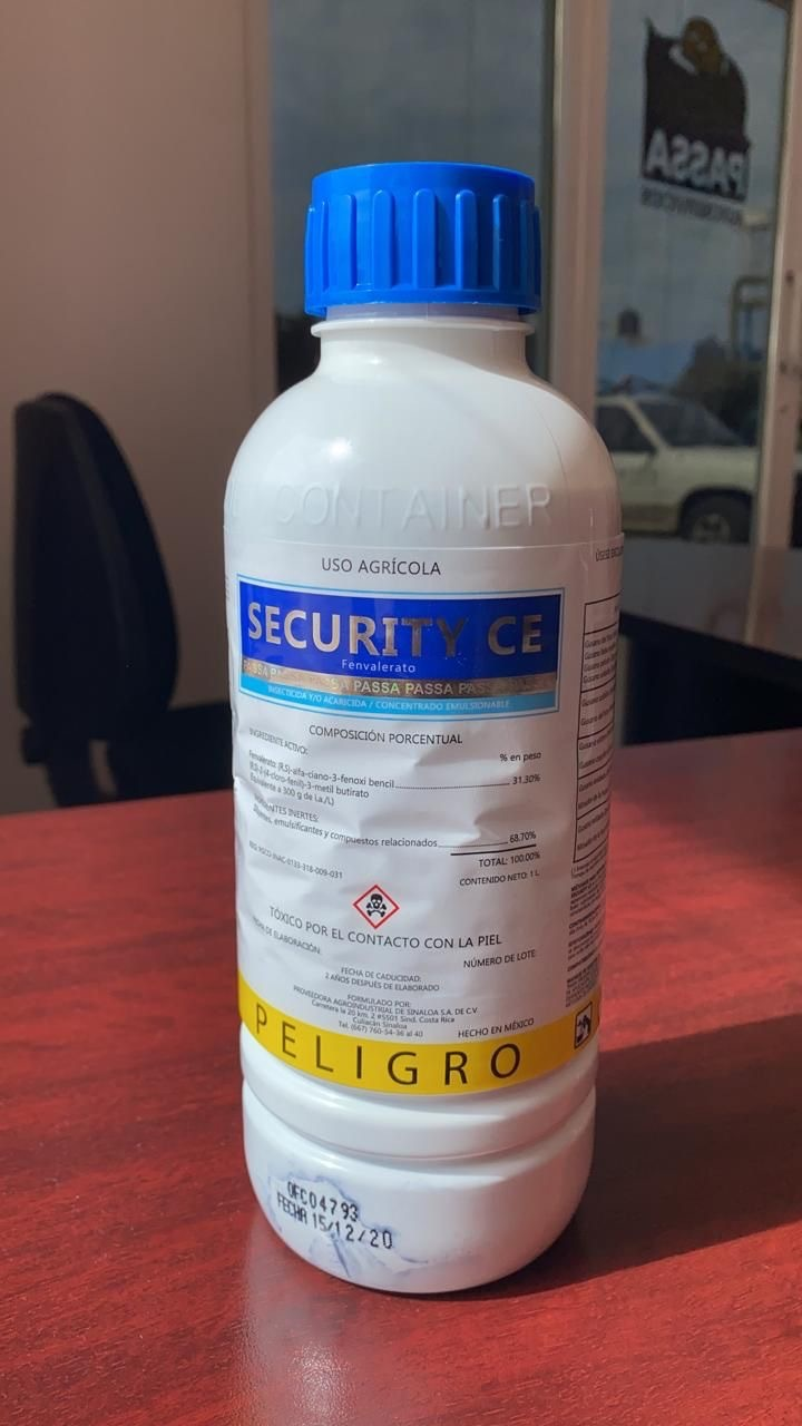 Security CE
