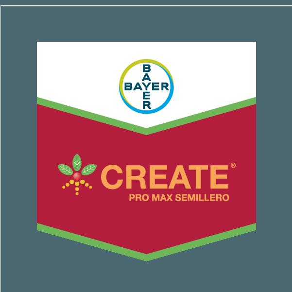 Create Pack Soja